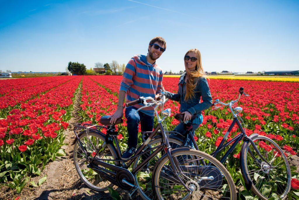 holland-netherlands-keukenhof-lisse-tulips-travelhackers-cycling
